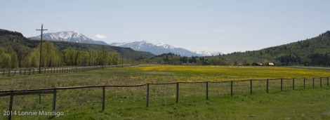 Near Swan Valley